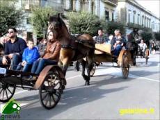 Galatina. Fiera di Santa Caterina d'Alessandria 2012. La sfilata